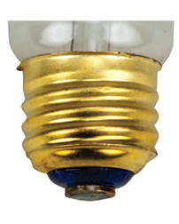 Medium Screw Base Bulb